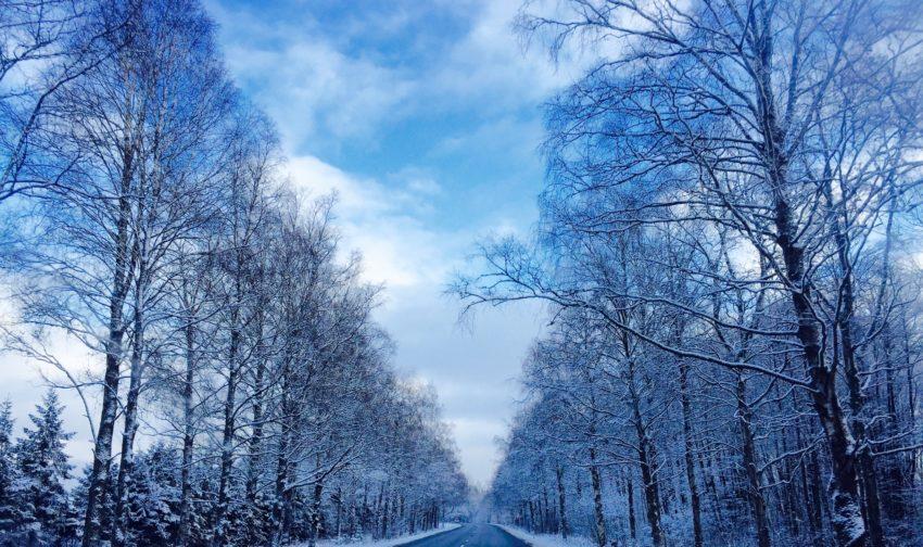 baltic run best photos